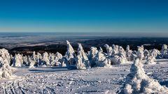 Bizarre Schneeskulpturen auf dem Brocken