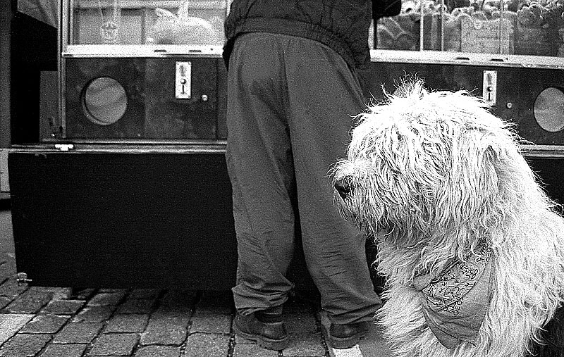 Black and white - Street photography