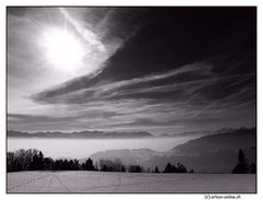 Black and White Winter Time