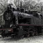 black beauty 184 DMC