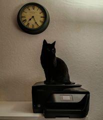 black panther on black printer under black clock