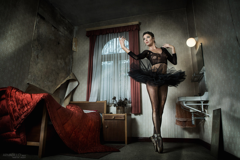 Black Swan in blue Hotel