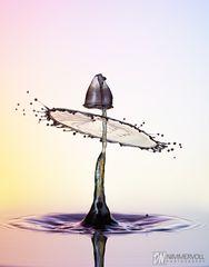 Black water drop