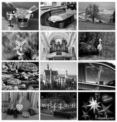 Black & White 2015