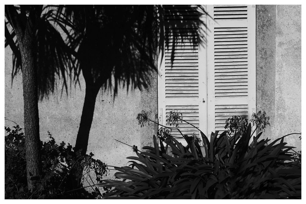 Black &White Things #2