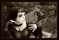 Black widow ll