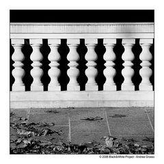 Black&WhiteProject05 8