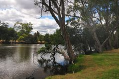 Blackwood River Fishing Spot