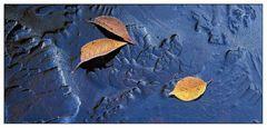 Blätter auf gefrorenem Weiher