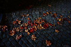 Blätter auf Pflaster