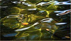 """Blätter im """"Goldwasser"""""""