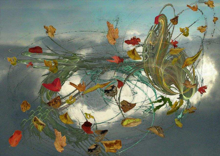 Blätter im Herbstwind