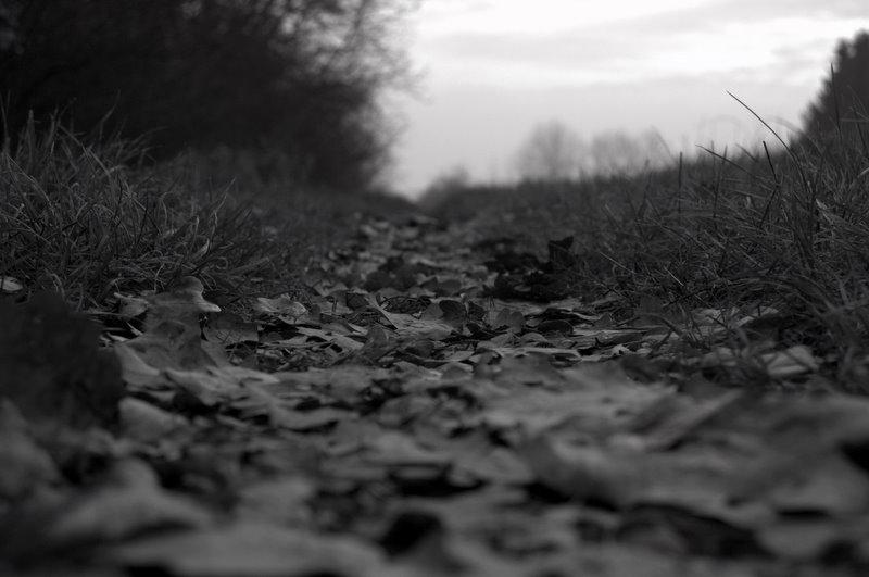 Blätterstrand