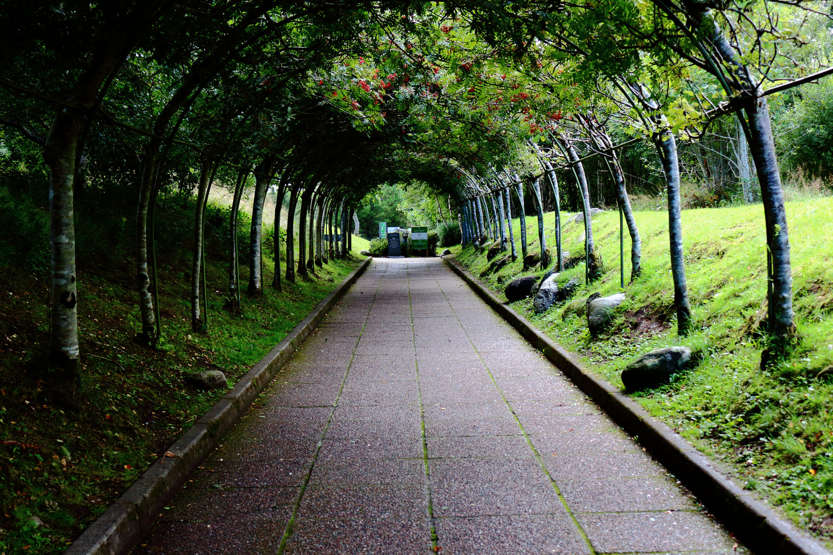 Blättertunnel