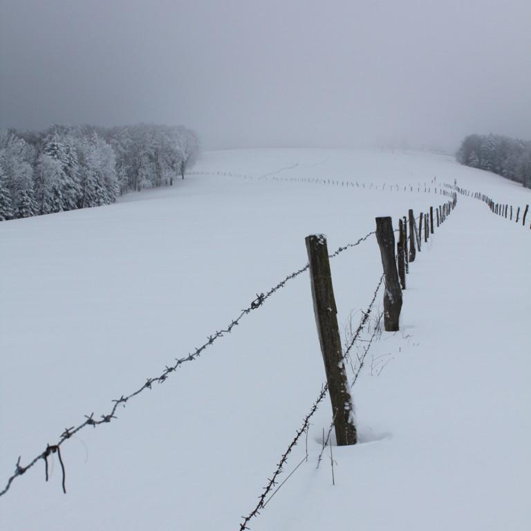 Blanc de neige ou de brouillard...