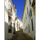 Blanco de Andalucia