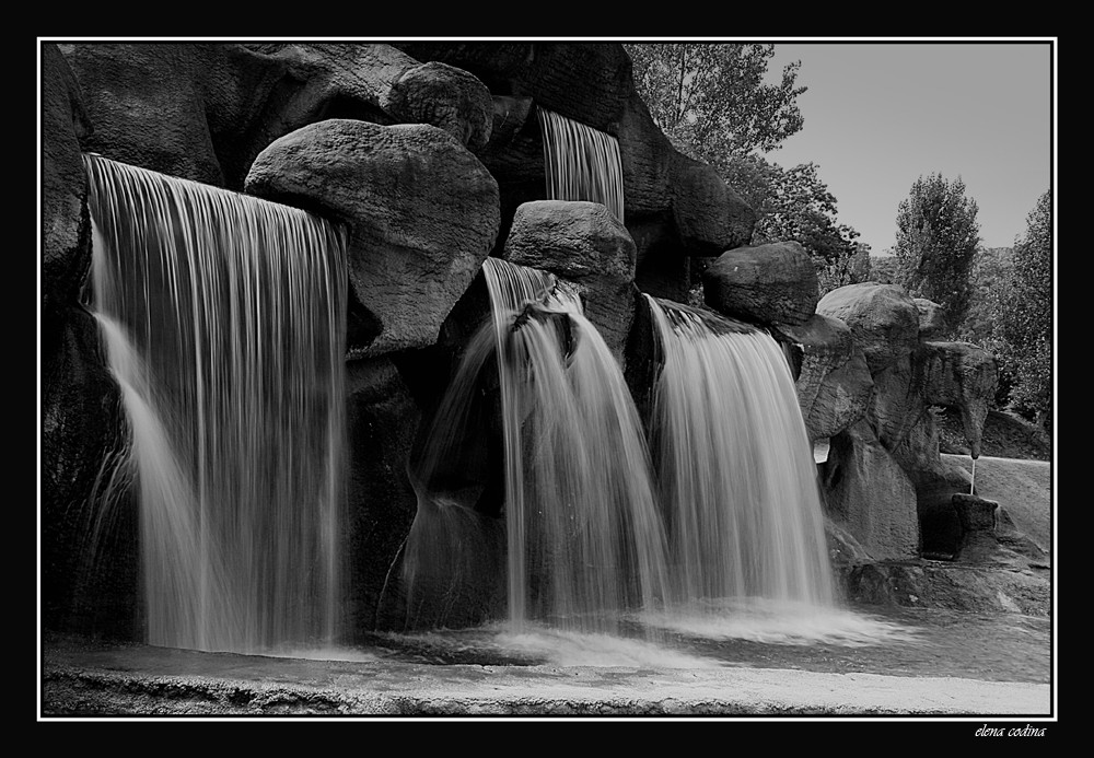 Blanco Y Negro Imagen Foto Paisajes Naturaleza Fotos De