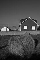 Blanco y negro (nueva versión de La Casa)
