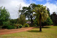 Blandys Garden Madeira