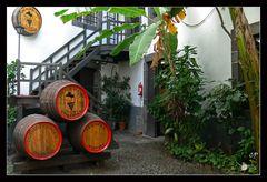 Blandy's Wine Lodge...