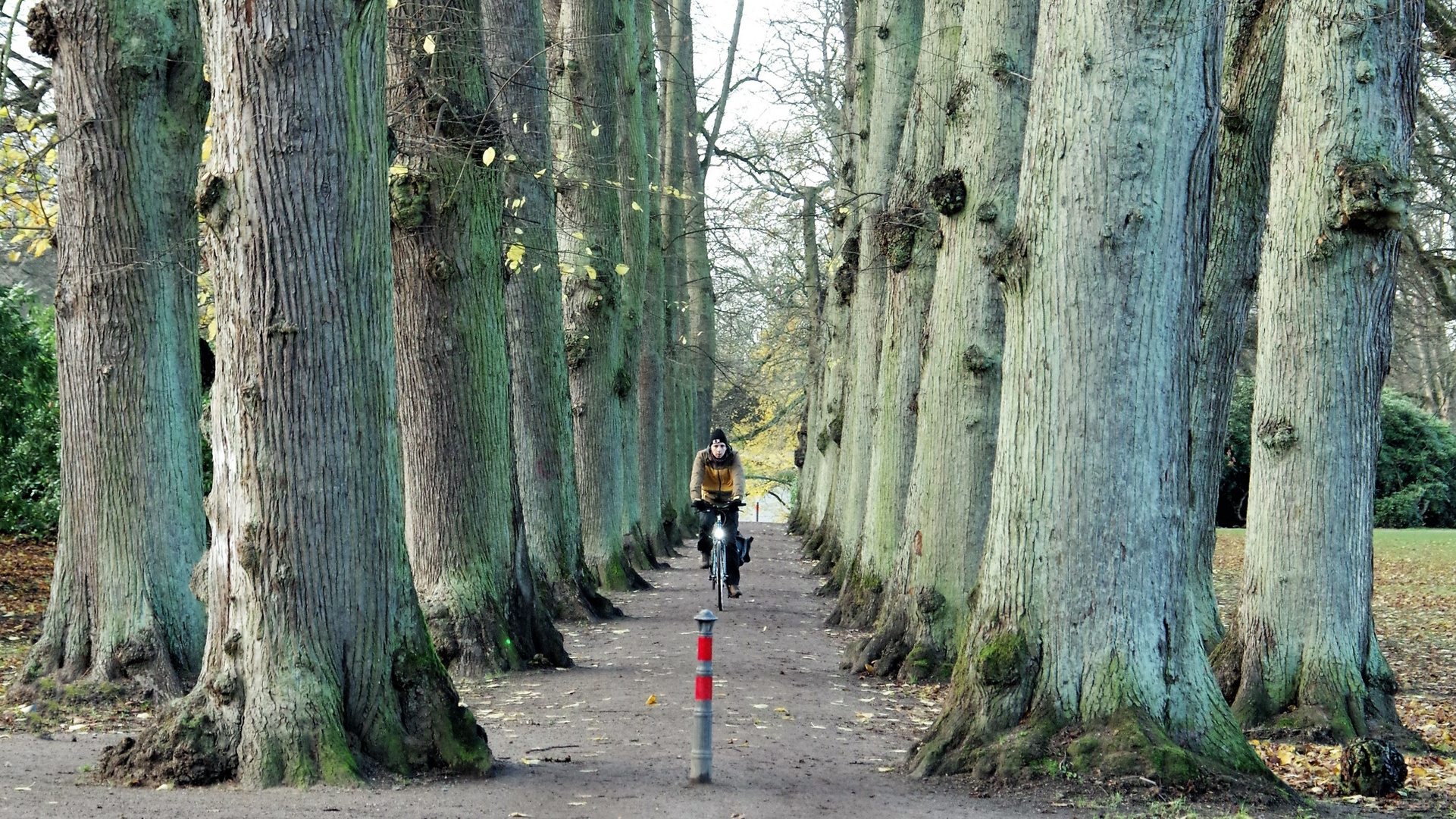 Blankenese - Hirschpark (bearbeitet)
