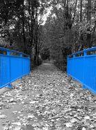 ~~~ Blau ~~~