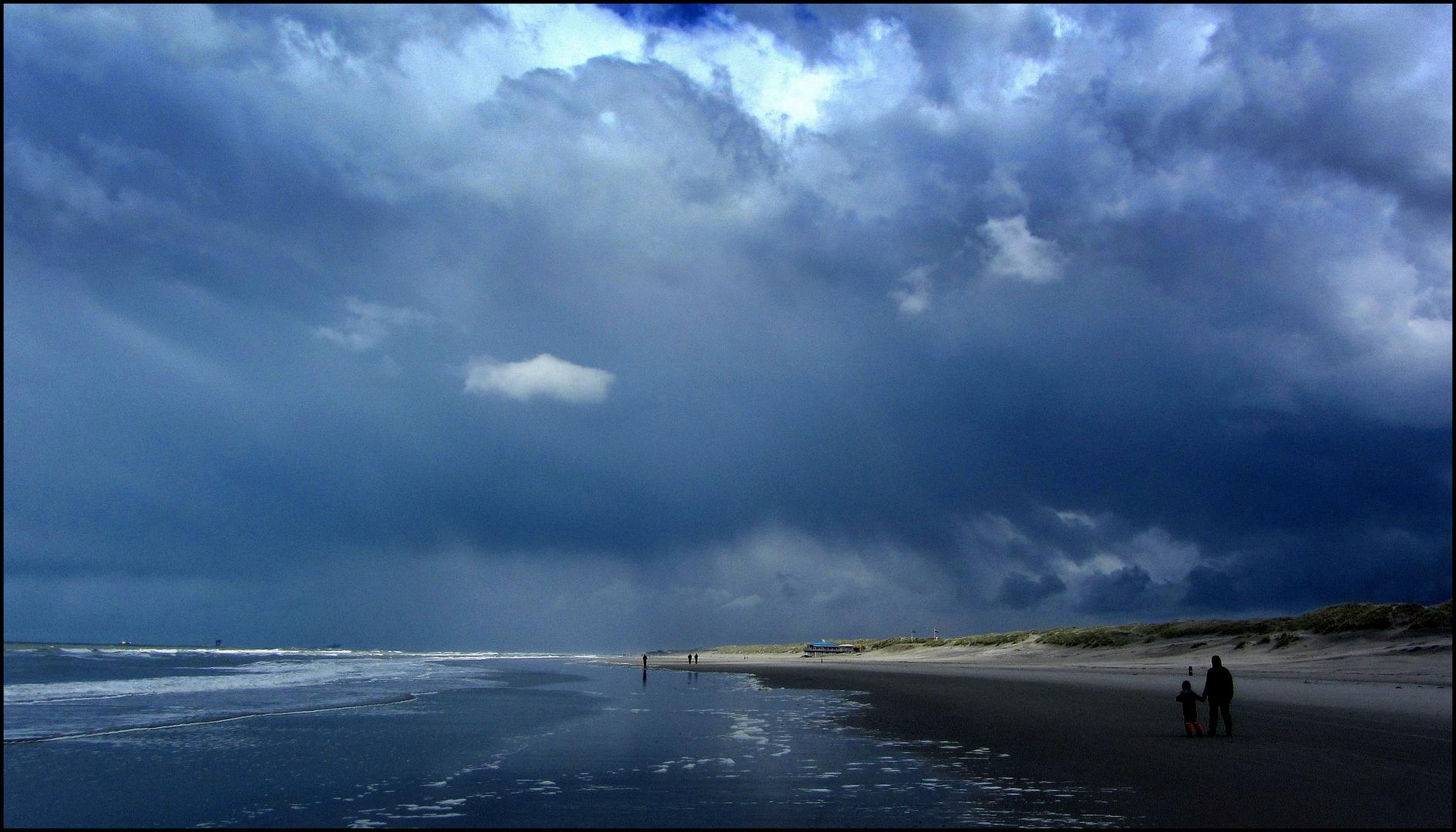 Blaudrohendes Unwetter am Meer