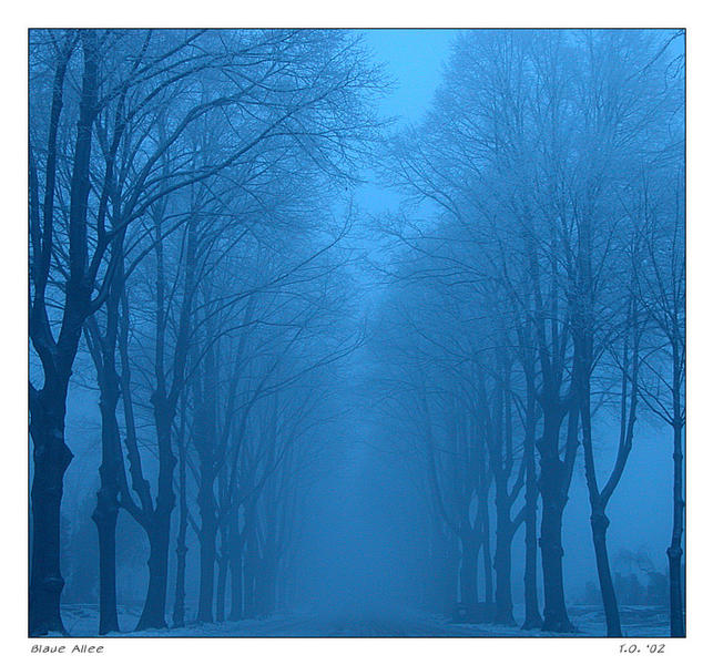 Blaue Allee