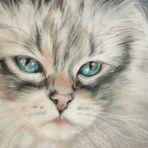 Blaue Augen...