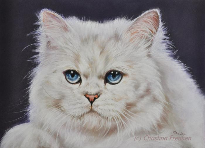 Blaue Augen wie ein Bergsee