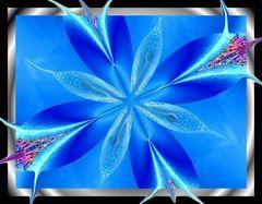 blaue eisblume