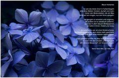 """""""Blaue Hortensie"""""""