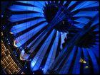 blaue Stahlblume