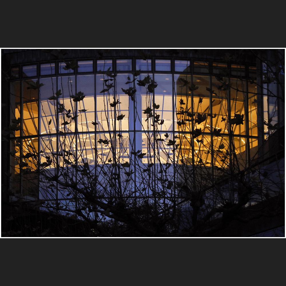 Blaue Stunde im Parlament