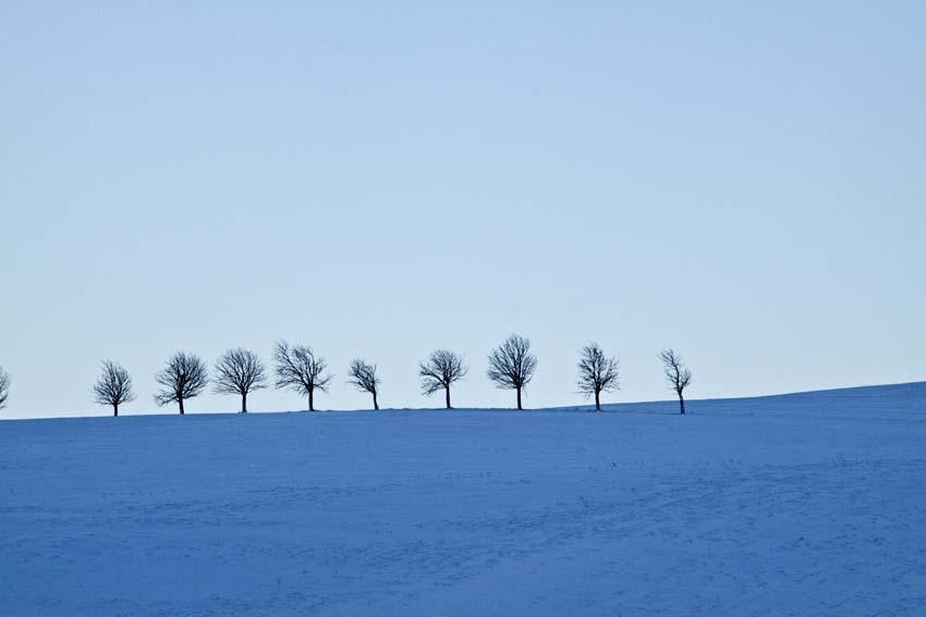 Blaue Stunde im Schnee