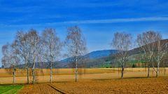 ~~~ Blauen - Blick 1: Vorfrühling ~~~