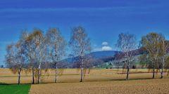 ~~~ Blauen - Blick 2: Frühling / Baumblüte ~~~