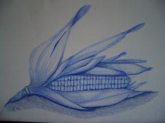 Blauer Mais