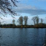 Blauer Morgen am See