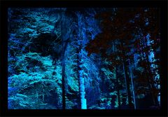 Blauer Wald....