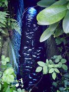 Blauer Wasserlauf