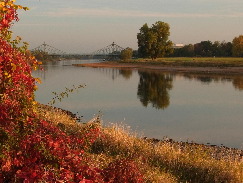 Blaues Wunder und Elbe im Herbst