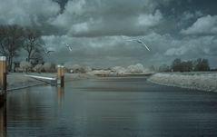 Bleckeder Hafen Infrarot