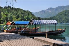 Bled - Boote