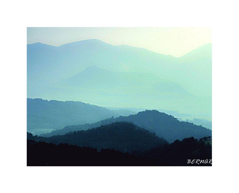 Bleus d'Auvergne
