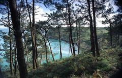 Blick auf das Cap de la Chèvre