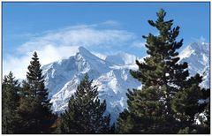 Blick auf das Weisshorn