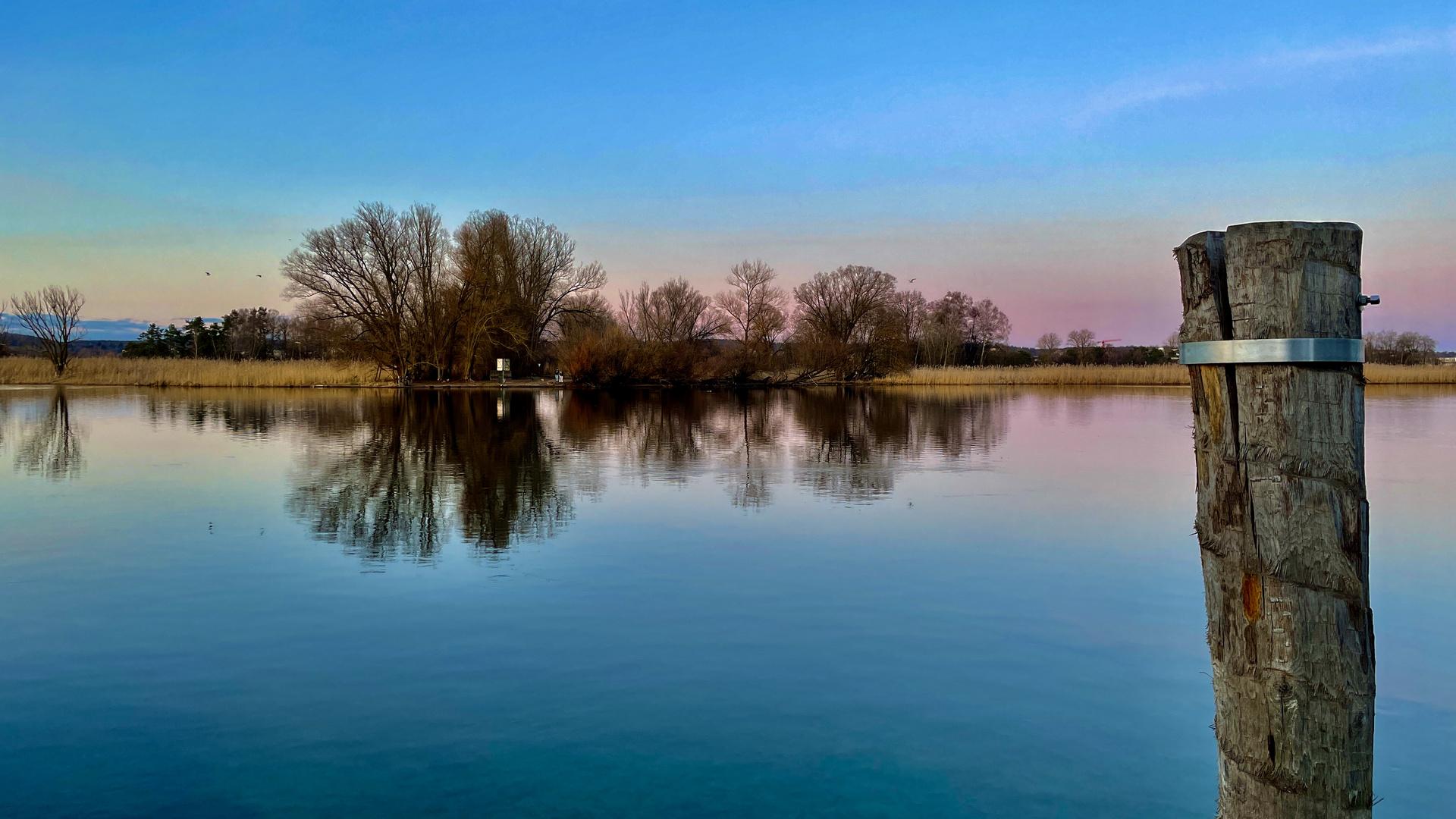 Blick auf das Wollmatinger Ried am Bodensee