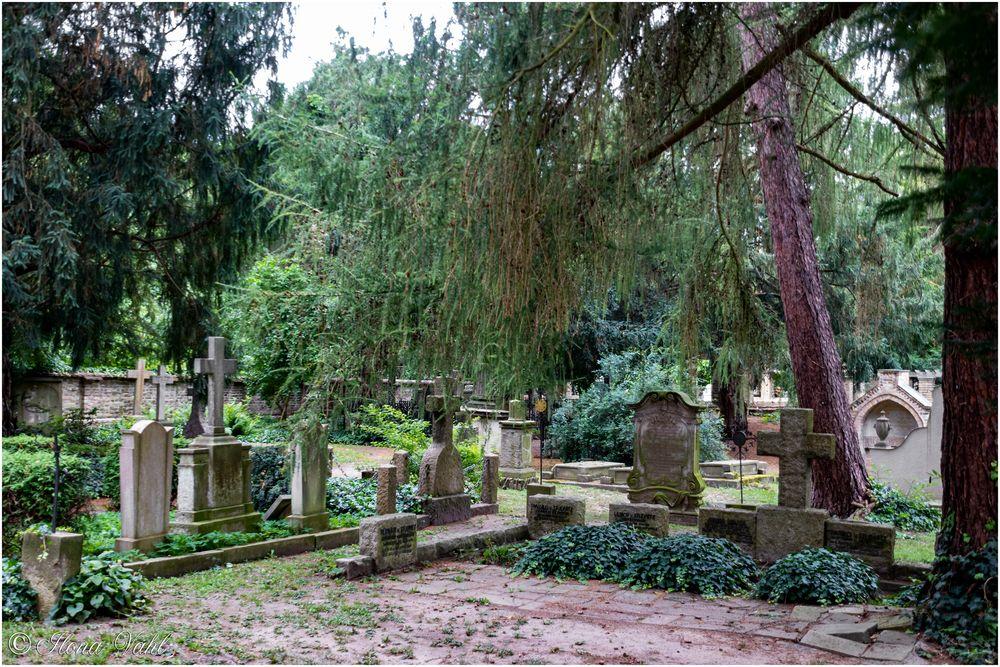 Blick auf den Friedhof