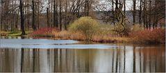 Blick auf den Haussee in Petzow ...